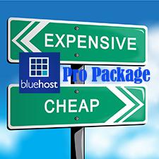 BlueHost Pro Plan Review – Better Than Cheap VPS