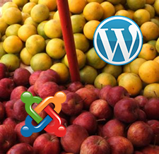 Comparison Between WordPress and Joomla – Which is the Better Choice for a New Blogger?