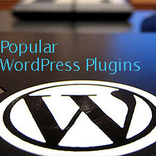 The Most Popular WordPress Plugins You Should Consider For a WordPress Site