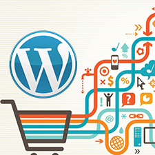 Does WordPress Work for a Shopping Cart or Small E-Commerce Website?
