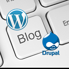 Which is a Better Choice for Beginners to Start a Blog, WordPress or Drupal?