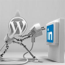 Best WordPress LinkedIn Plugins for LinkedIn Promotion