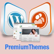 Best Premium BuddyPress Themes That Keep Your Site Attractive
