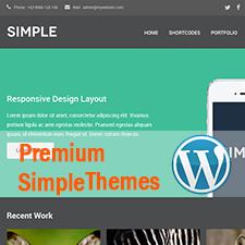 Best Premium Simple WordPress Themes