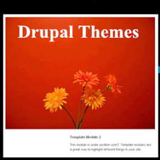 Best Drupal Themes with Simple Options Panel & Rich Features