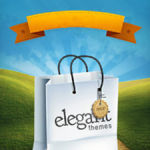 Elegant Themes Review – Comprehensive Review on the WordPress Themes