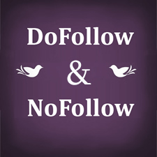 Basics About DoFollow Link and NoFollow Link – What Are the Differences