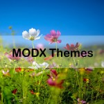 A Collection of the Best MODX Themes That Are Beautifully Designed