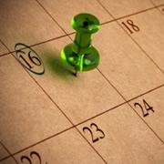 Scheduled Pins
