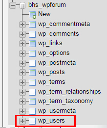 wp user table