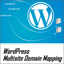 Beginner's Guide to WordPress Multisite Domain Mapping