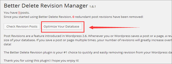 Post Revisions - Optimize Your Database
