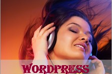 How to Use and Customize WordPress Audio Player?